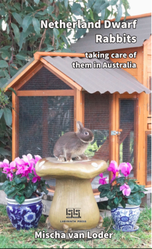 Buy 'Netherland Dwarf Rabbits: taking care of them in Australia' at Smashwords